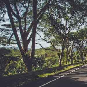 The Camflare Journey